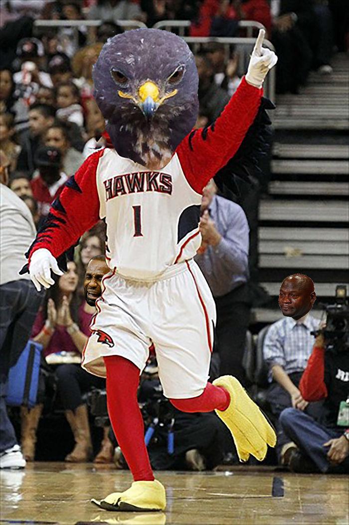 Hawks On Hawks On Hawks