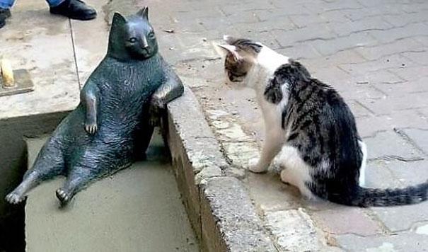 laid-back-cat-statue-tombili-istanbul-3