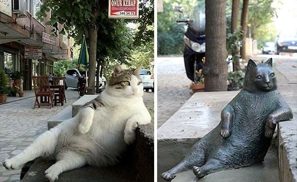 laid-back-cat-statue-tombili-istanbul-8