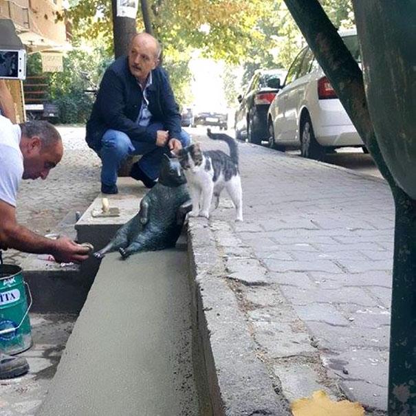 laid-back-cat-statue-tombili-istanbul-9