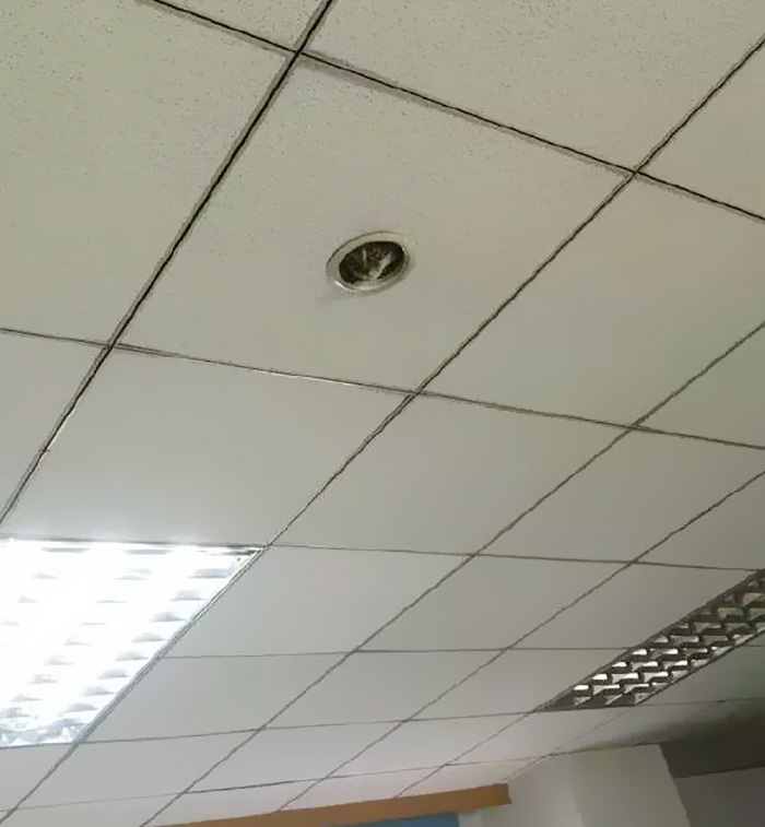 office-ceiling-cat-monitoring-omocha-no-uma-1