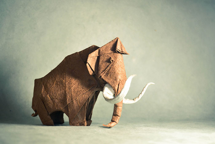 140 Incredible Origami Animals By Spanish Artist Gonzalo Calvo