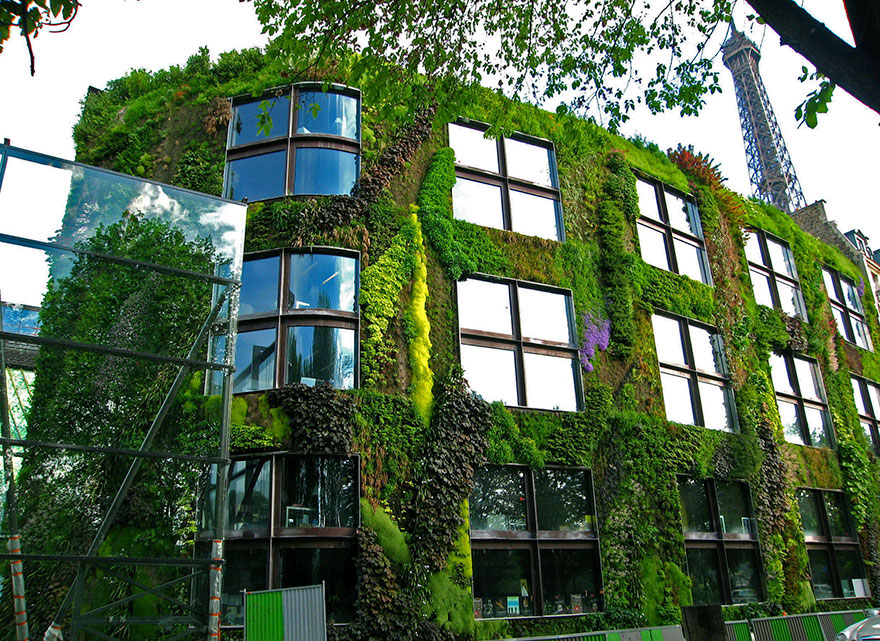 plant-urban-gardens-anyone-law-paris-1a