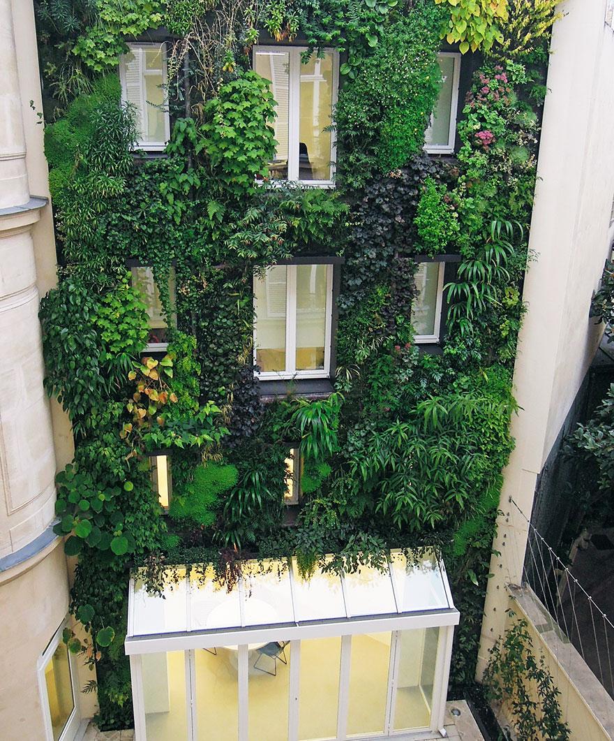 plant-urban-gardens-anyone-law-paris-3a