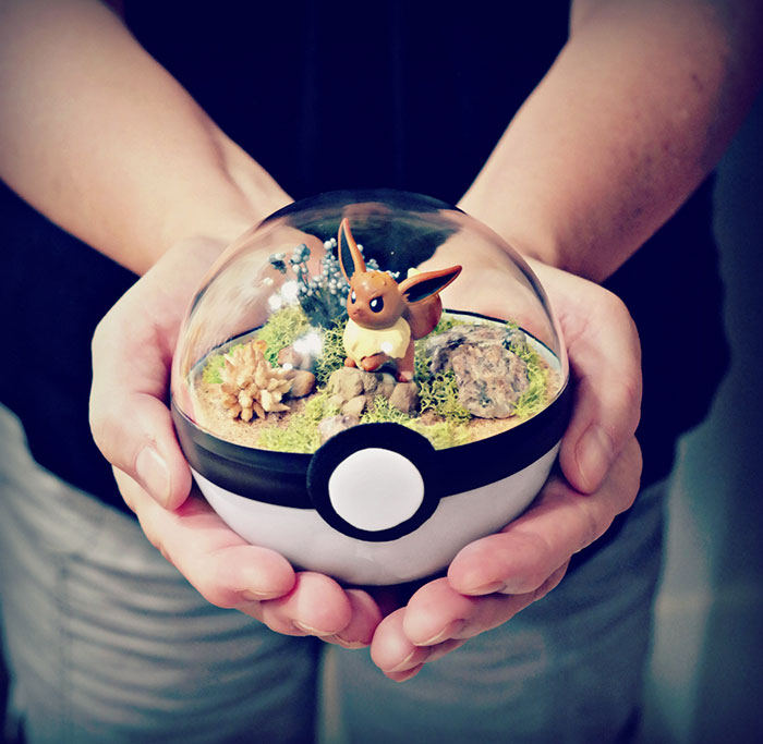 poke-ball-terrarium-pokemon-the-vintage-