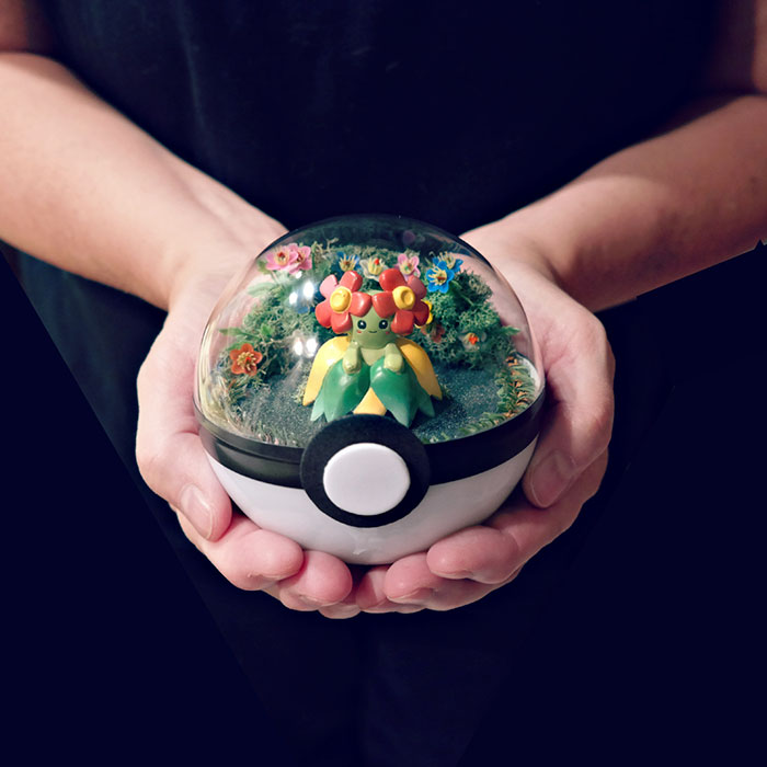 Pokeball Terrariums Are A Thing Now But The Demand Is So Big It S