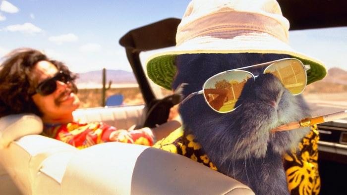 Fur And Loathing In Las Vegas