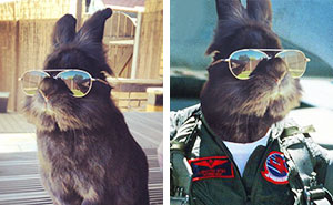 Somebody Put Sunglasses On A Bunny And It Started An Epic Photoshop Battle (10+ Pics)