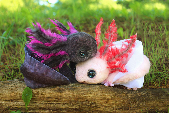 Realistic Baby Animals & Dragons That I Create For People To Adopt