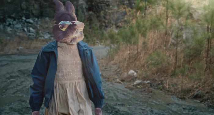 Stranger Bunny