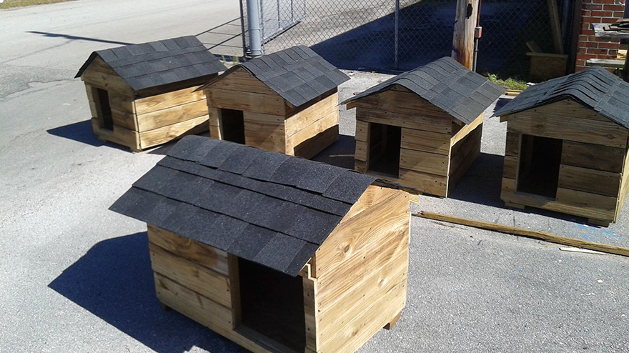students-make-cat-and-dog-houses-jacksonville-3