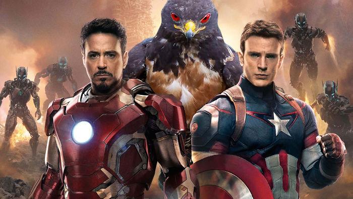 Hawk Ultron
