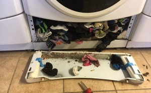 Washing Machines Do Eat Socks, And More!