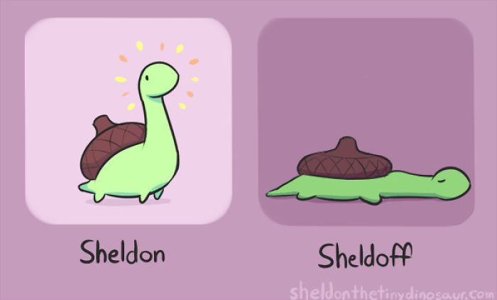 I Did Not Create Sheldon But I Love Him