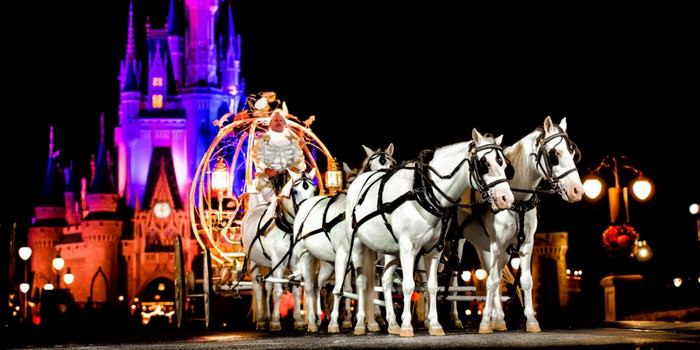 walt-disney-world-wedding-magic-kingdom-4