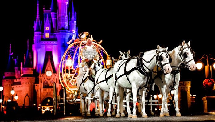 You Can Now Get Married At Disney World At Night And Have The Entire Park To Yourself