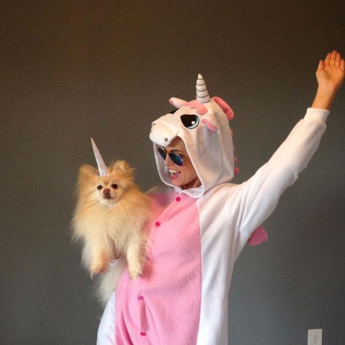 waynes-world-dog-halloween-costume-3