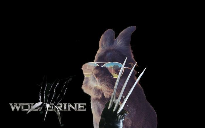 Logan Wolverine 3