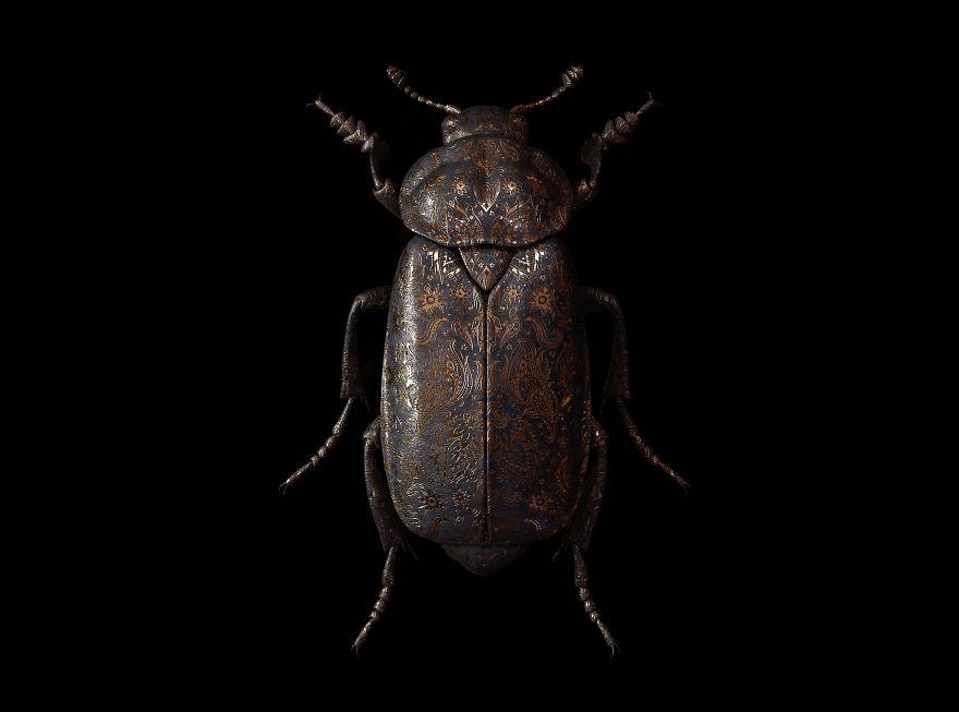 Engraved Entomology By Billelis
