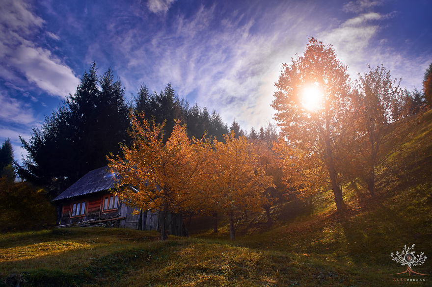 I Captured Fairytale-Like Autumn In Romania With $250 Camera To Show You Don't Need Expensive Gear