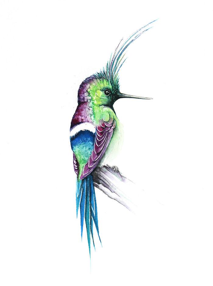 Hummingbird In Green