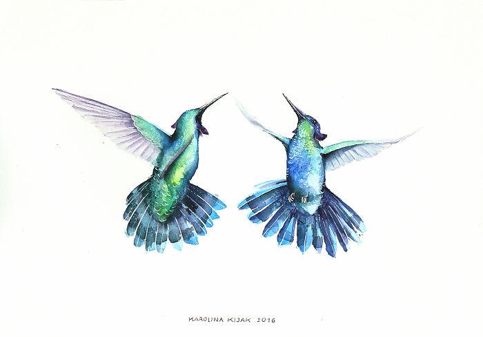 Hummingbirds Love