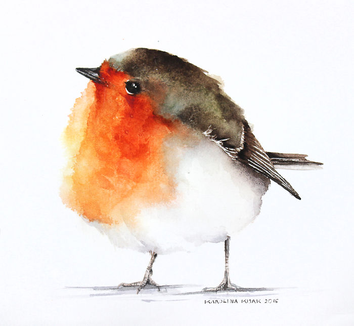 I Watercolor Birds To Express How Much I Love Them | Bored ...