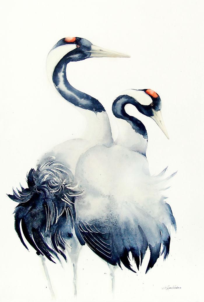 Common Cranes Love