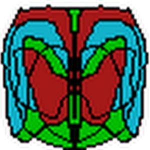 Adamzam