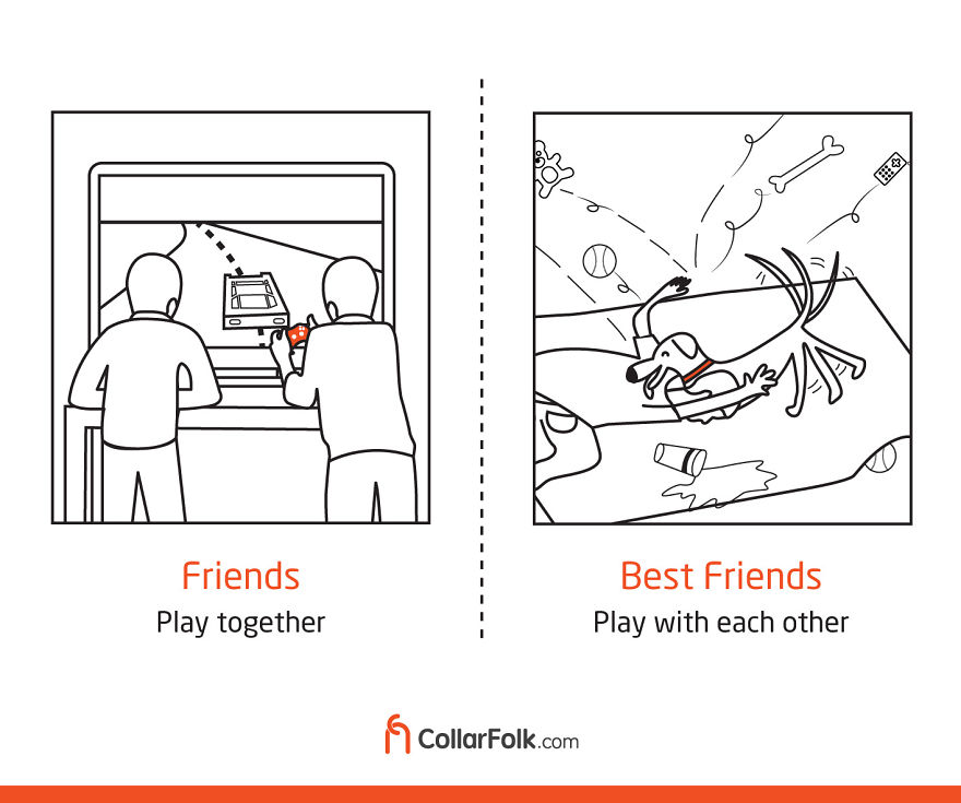 A Game With Best Friend Is Always Double The Fun!