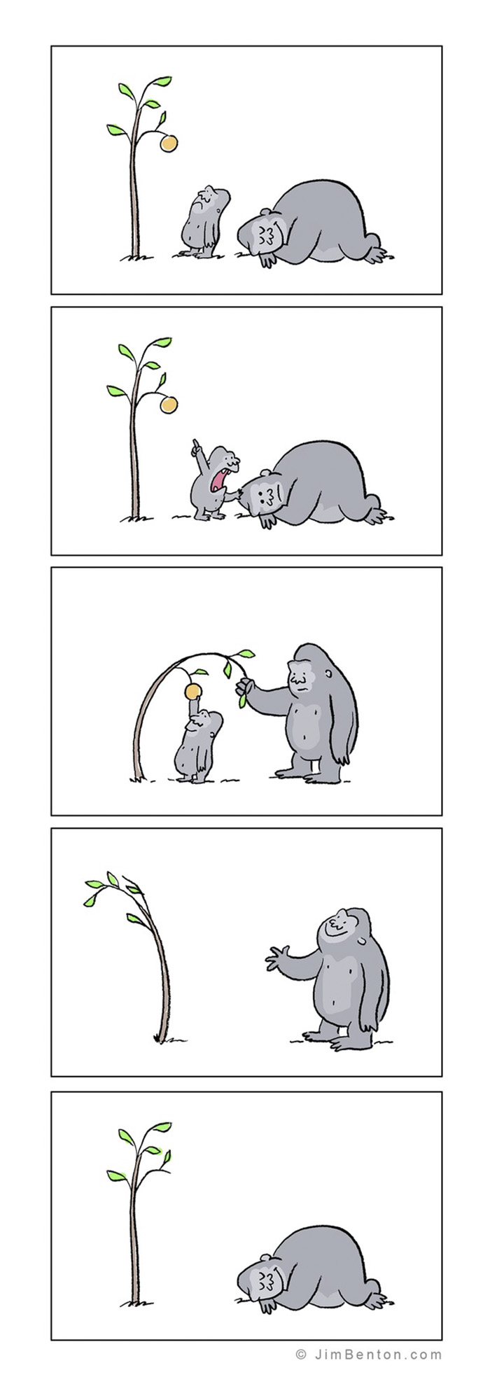 A Few Animal Cartoons By Jim Benton