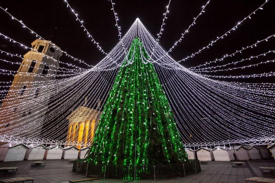 unique christmas tree illuminated by 50000 lightbulbs opens festive season in vilnius bored panda - Christmas Tree Light Bulbs