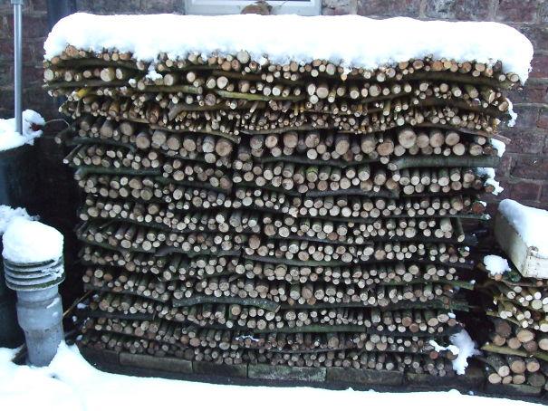 Compost John's Snowy Logpile