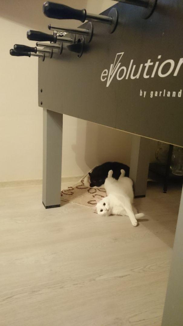 Black & White Laziness...