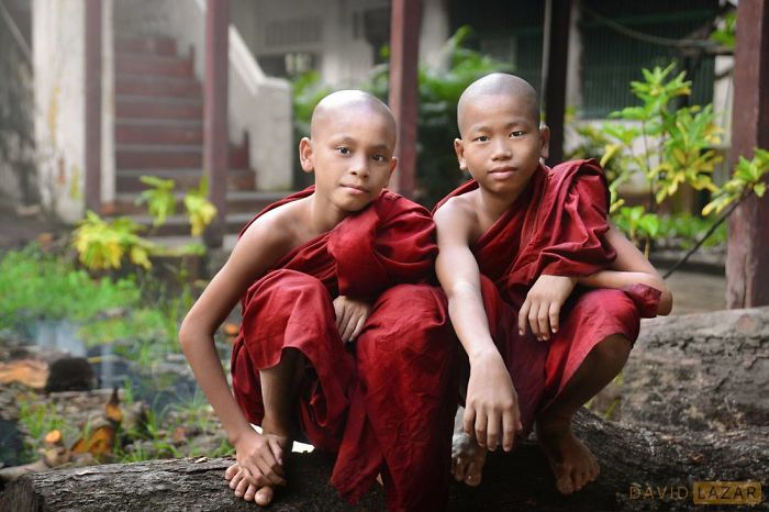 Two Monk Friends On A Log At A Monastery In Bago