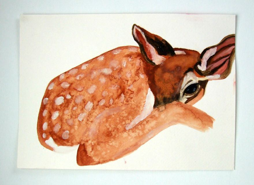 Watercolour Fawn