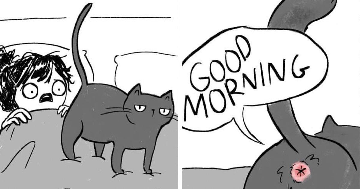 Life With Cats Is Not Easy At All, And These 10+ Illustrations Demonstrate It Perfectly
