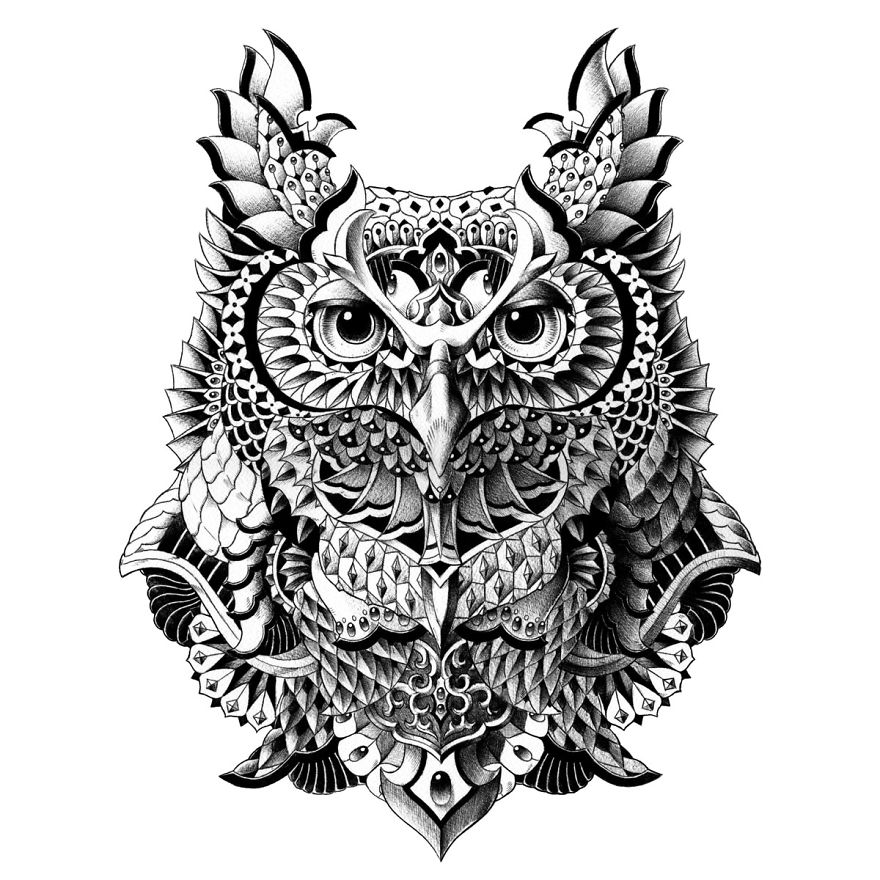 Century Owl
