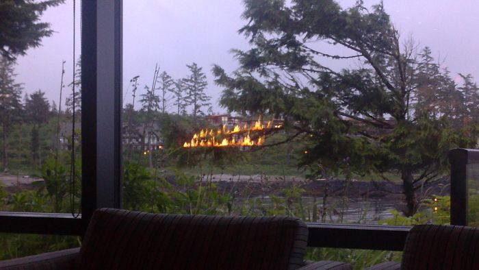 Reflection Of Fireplace Made It Look Like Branches Were On Fire Outside