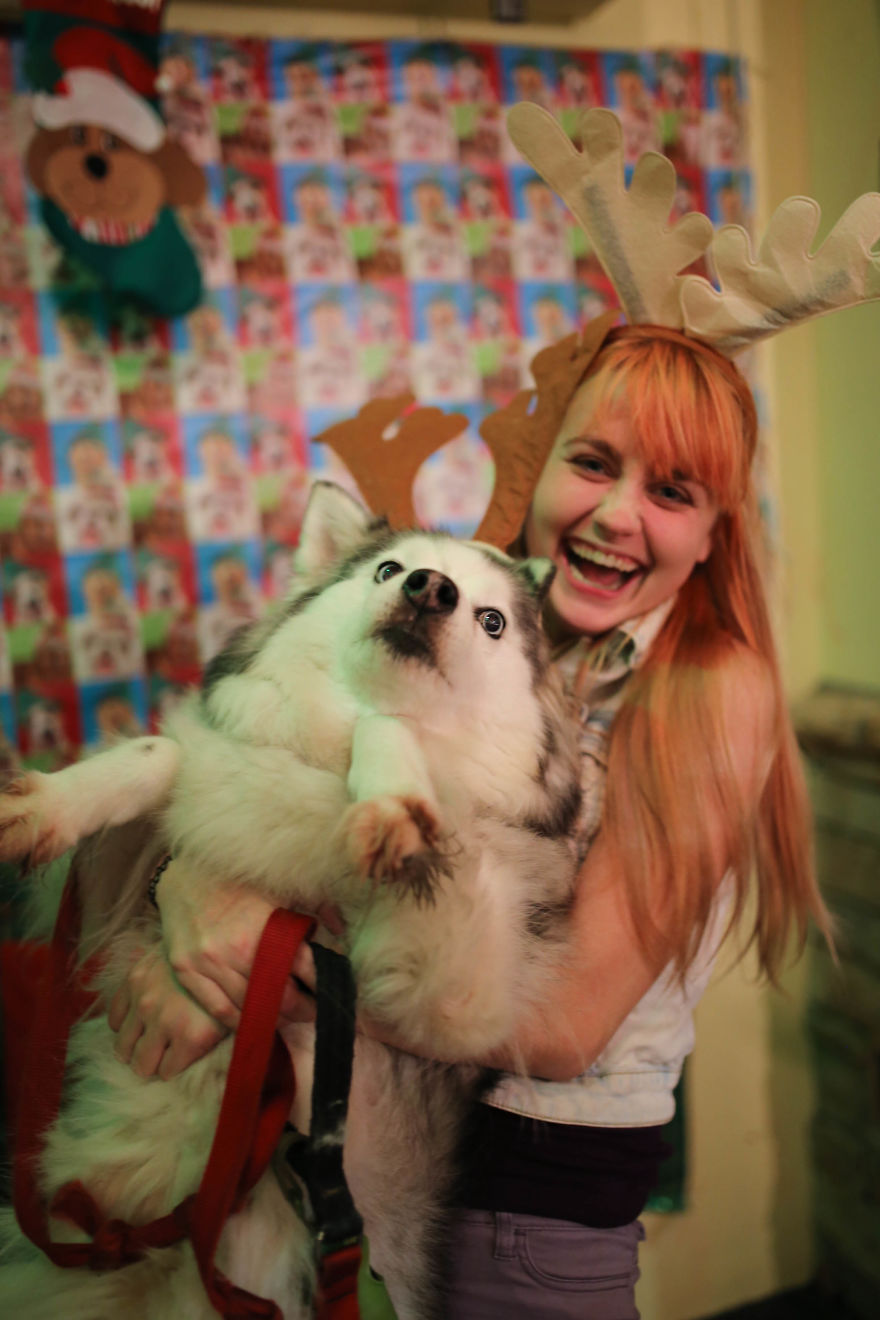 New post sign in sign up Next Post I tried to take a cute christmas photo holding my dog...