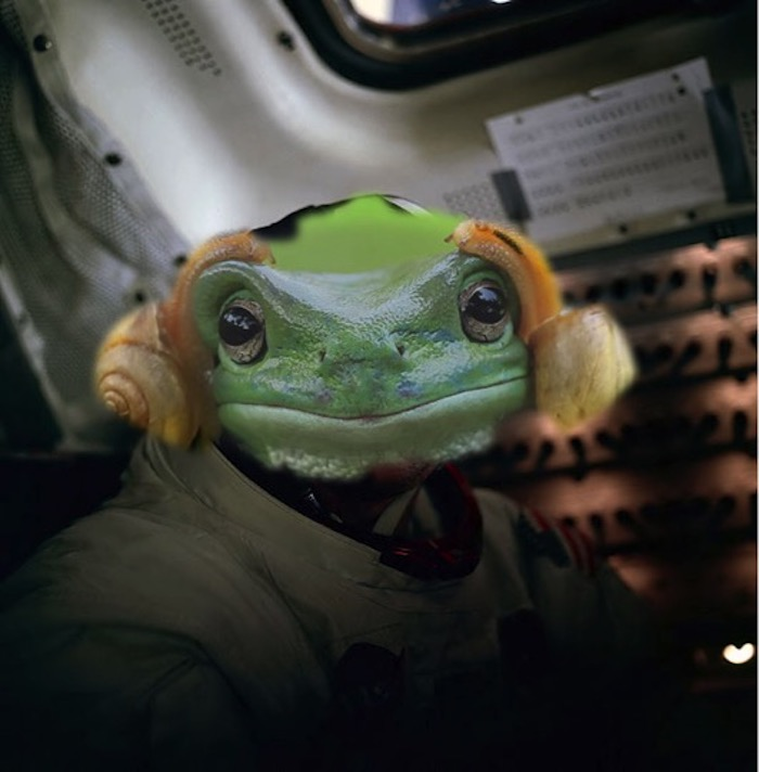 Frog Armstrong
