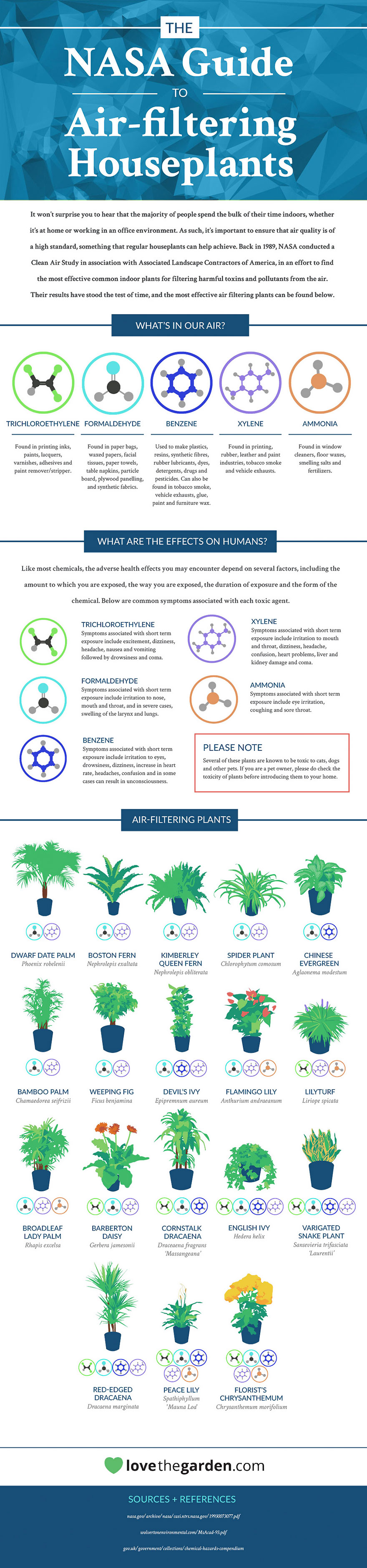 NASA Reveals A List Of The Best Air-Cleaning Plants For Your ... on spices names, grass names, berries names, wildflowers names, veggies names, plants names, pets names, design names, garden names, cacti names, photography names, nuts names, furniture names, weather names, insects names, ornamental grasses names, herbs names, leaves names, lawn care names, pottery names,