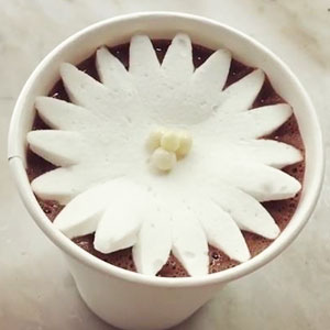 Blooming Marshmallows In Hot Chocolate