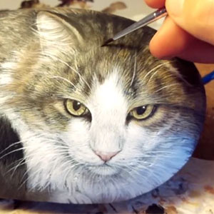 This Cat Is Actually A Rock
