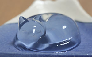 Japanese Cat Water Cake Is Taking Over Twitter In Japan