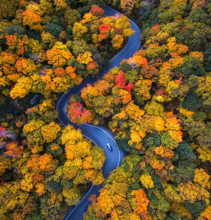 We Drove Through Every State In Northeast US To Photograph The Beauty Of Fall
