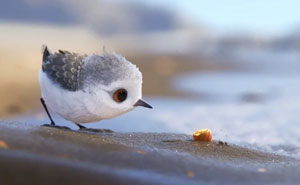 Pixar's New Short Film 'Piper' Is The Most Adorable Thing Ever And You Can Watch It For FREE