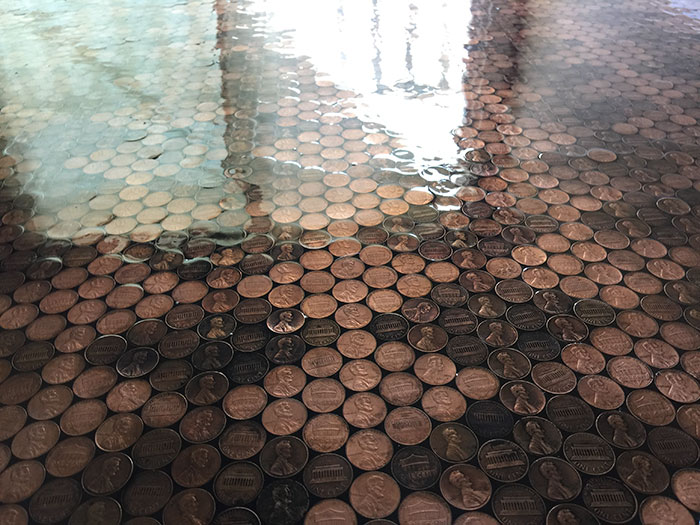 Woman Uses 13000 Pennies To Renovate Old Floor And Turn It Into
