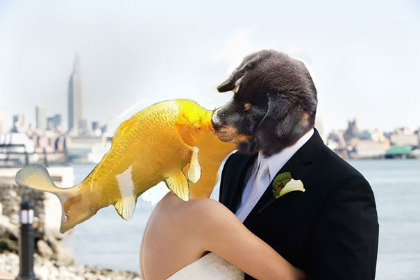 Puppy Kissing A Fish Inspires A Hilarious Photoshop Battle (10+ ...