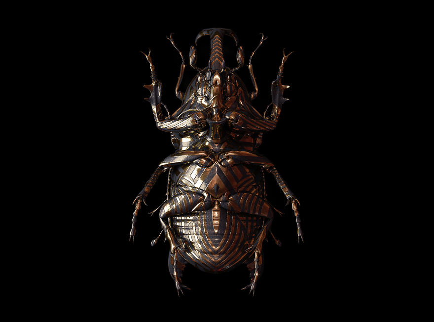 Engraved-entomology-by-billelis